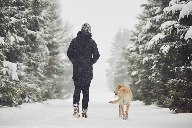 SAD Walk